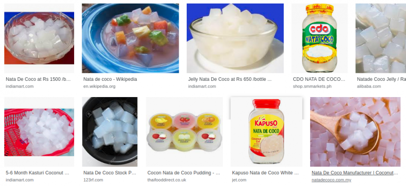 File:NataDeCoco googleSearch.png