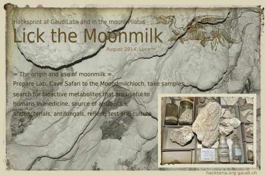 Moonmilk sprint flyer.png
