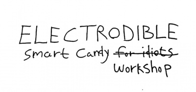 Electrodible workshop.jpg