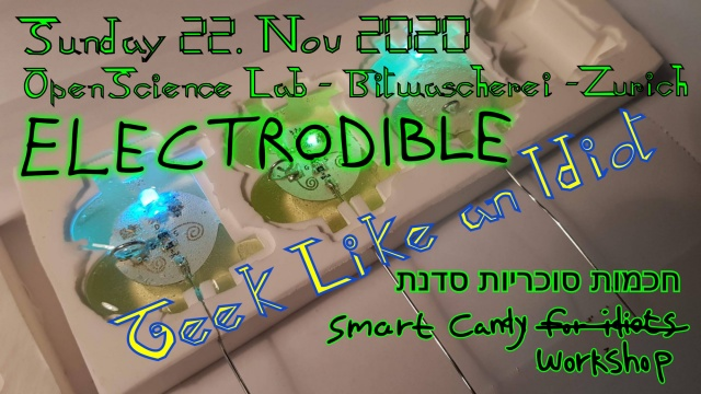 Electrodible flyer web.jpg