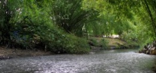 Jogja River Project 2012 #2 Winongo River