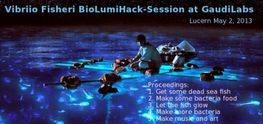 Vibriio Fisheri BioLumiHack-Session at GaudiLabs, Luzern