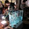 MolecularWurstMachine / Documentation of the SoftBots Workshop @ BioTehna, LJ