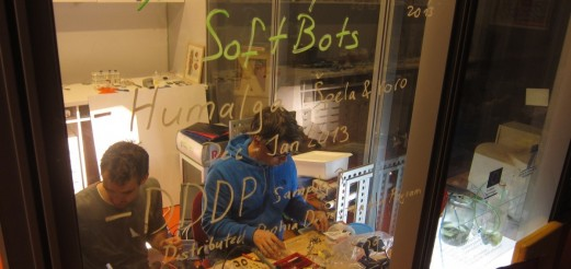 SoftBots µ-Residency with Ralf Schreiber & derstrudel @ BioTehna, Ljubljana