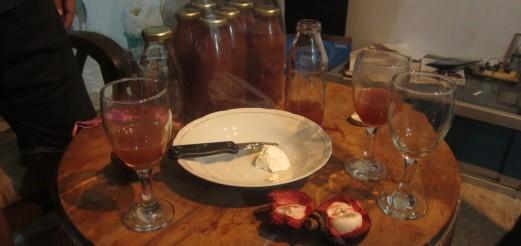 Cheese (Keju) Making Experiments in Yogya