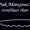"""Pak Marcjono's Sonifikasi Ikan"" aka Fish-Hacking"