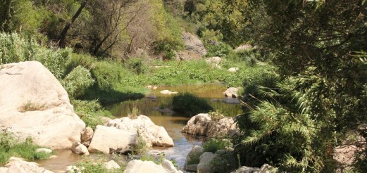 Anoia River Stories | PechBlenda Lab and friends – Aug 2014