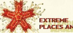 Extreme Places and Extended Senses – Srishti, Jan – Mai 2015