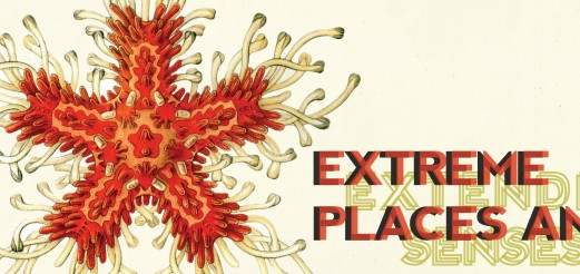 Extreme Places and Extended Senses – Srishti, Jan – Mai 2015