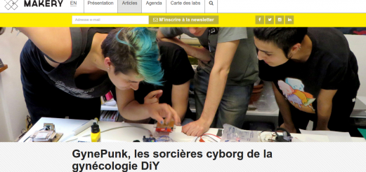 Article on GynePunk and Cyborg Witches | Makery, June 2015