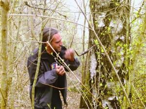 tree_Tapping_dusjagr