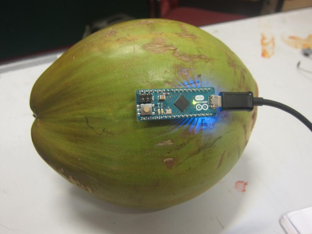 Coconut_ArduinoMicro