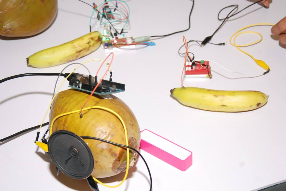 bananas_and_coconuts_arduinoD15_BLR